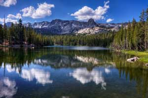 mammoth lakes pet friendly